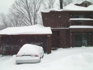 Front Yard March 8