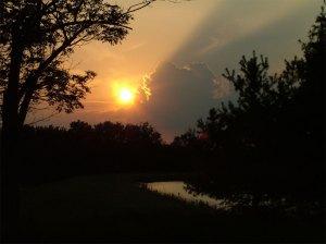 Letha Sunset