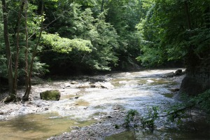 Brandywine Creek