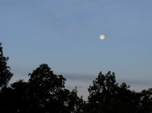 Moonset August 7