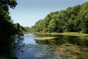 Beyer's Pond, Berea