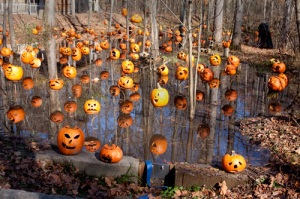 Pumpkin Lagoon