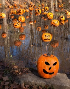 Pumpkin Lagoon - 2