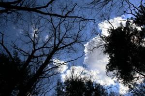 Brecksville Sky