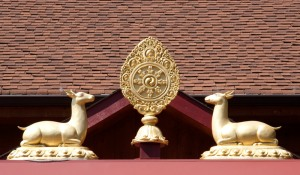 Palyul Entry