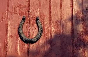 Horseshoe #0019