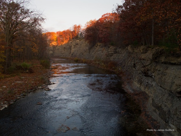 Photo: Sunrise illuminates trees along river valley. Photo by James Guilford.