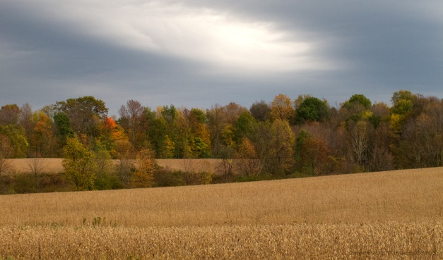Photo: A brooding sky over a rural autumn scene in Medina County, Ohio. Photo by James Guilford.