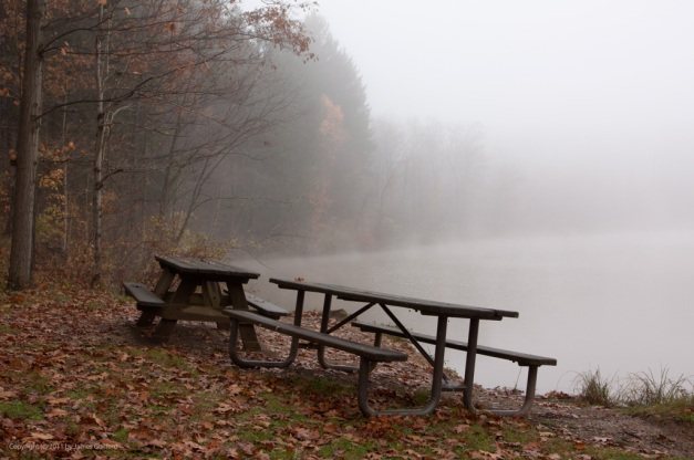 Photo: Two picnic benches sit among fallen autumn leaves along a foggy lakeshore. Photo by James Guilford.