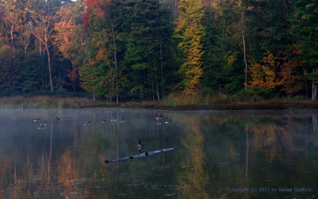 Photo: Morning mists and early light play on the still waters of a pond in the Strongsville (Ohio) Wildlife Area. Photo by James Guilford.