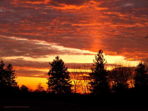 Photo: Beautiful orange sunrise with sun pillar. Photo by James Guilford.