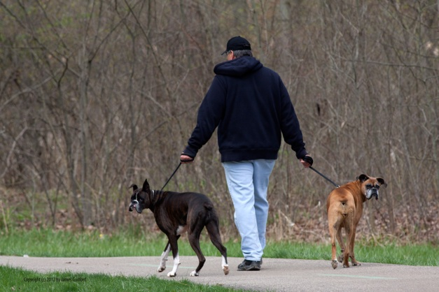Photo: Man with two dogs. Photo by James Guilford