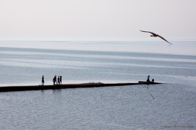Photo: Teenagers walking on breakwall scare seagulls into flight. Photo by James Guilford.