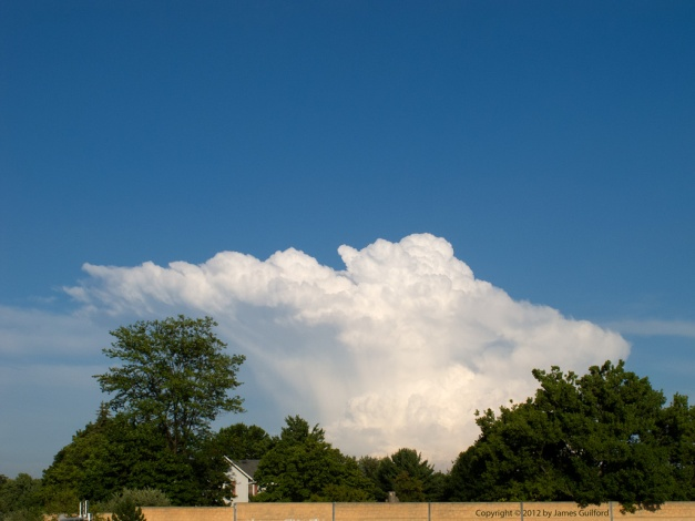Photo: Cumulus cloud over trees. Photo by James Guilford.