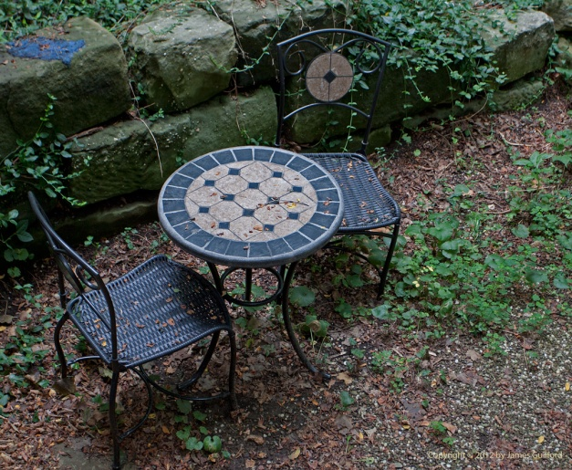 Photo: Patio table and chairs with leaf debris. Photo by James Guilford.