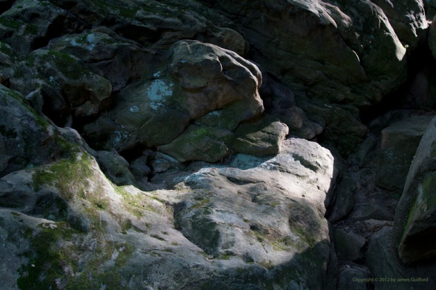 Photo: Morning light spotlights an area of rock in shadow. Photo by James Guilford.