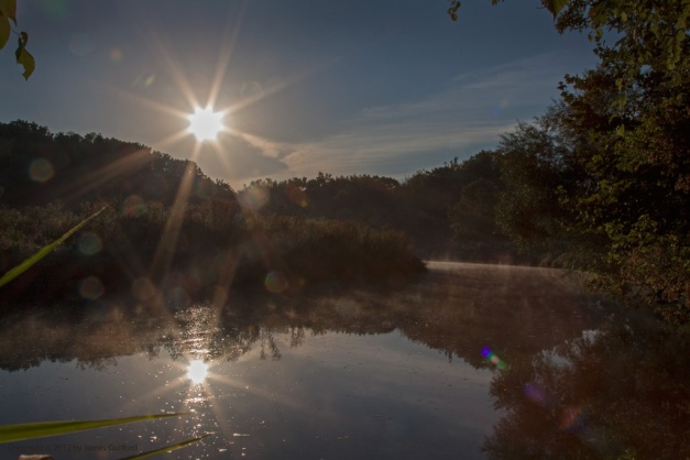 Photo: Sunrise reflected in still waters with lens flares all around. Photo by James Guilford.