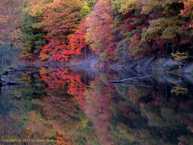 Photo: Colorful autumn trees reflected in still water. Photo by James Guilford.