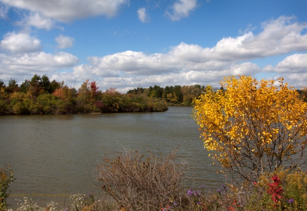Photo: Autumn foliage with lake. Photo by James Guilford.