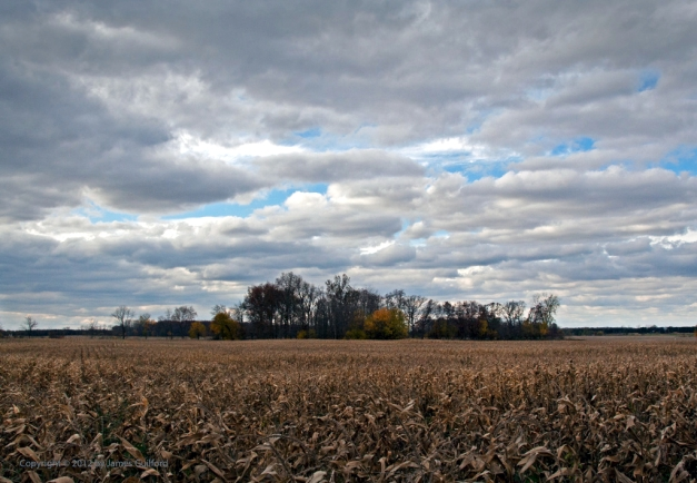 Photo: Dramatic clouds dominate farm landscape. Photo by James Guilford.