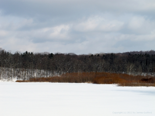 Photo: Winter landscape at Hinckley Lake, Ohio. Photo by James Guilford.