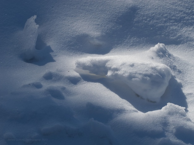 Photo: Bright spots in the shadows illuminate snow formations. Photo by James Guilford.