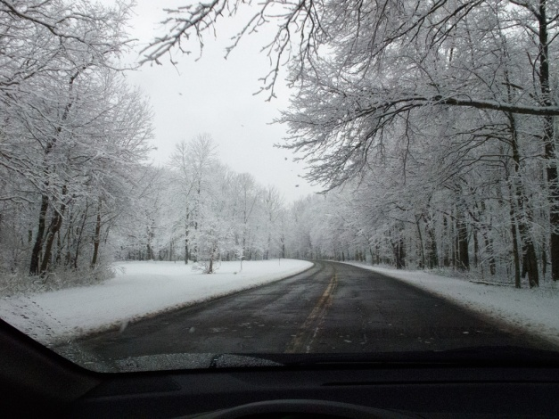 Photo: Dark road surrounded by snow-covered trees. Photo by James Guilford.