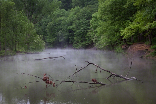 Photo: Mist rises over a lagoon. Photo by James Guilford.