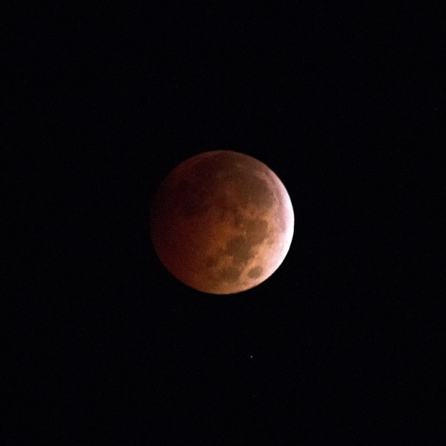 Photo: Total Lunar Eclipse - October 8, 2014. Photo by James Guilford