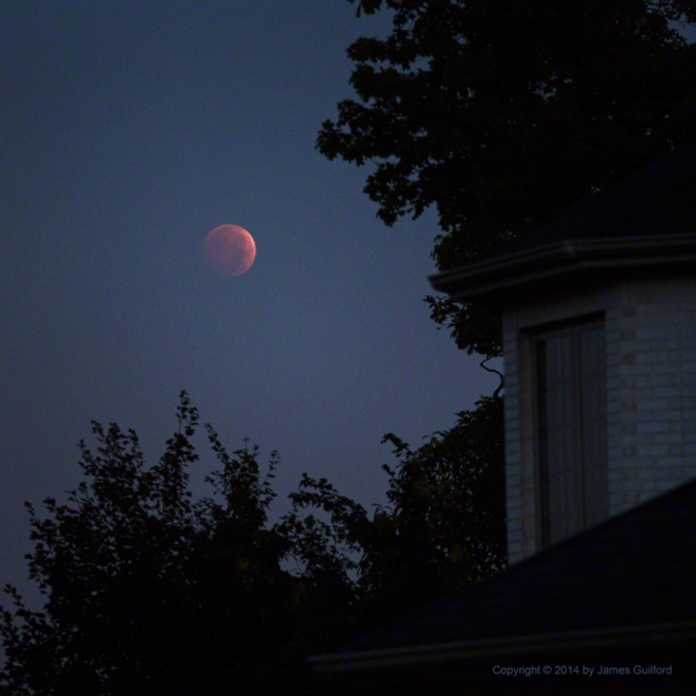 Photo: Total Lunar Eclipse, Oct. 8, 2014. Photo by James Guilford.
