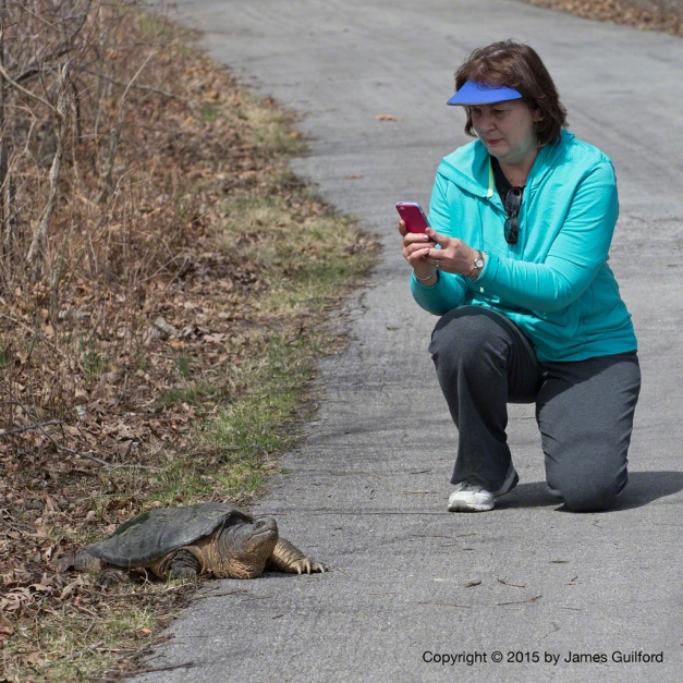 Photo: Woman photographing large snapping turtle. Photo by James Guilford.
