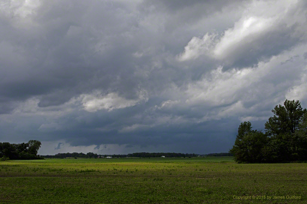 Photo: Green bean field with storm clouds overhead. Photo by James Guilford.