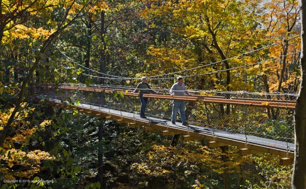 Photo: Couple on Murch Canopy Walk. Photo by James Guilford.