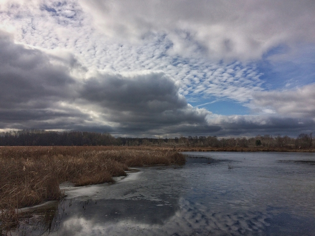 Photo: Dramatic clouds, sun, over wetland area. iPhone Photo by James Guilford.