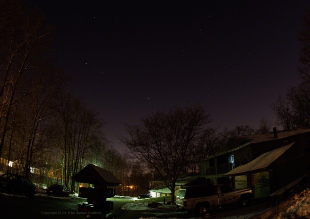 Photo: Orion and Pleiades in the Trees while Others Float Above. Photo by James Guilford.