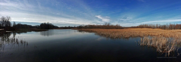 Photo: Sheldon Marsh - Wetland Panorama. Photo by James Guilford.