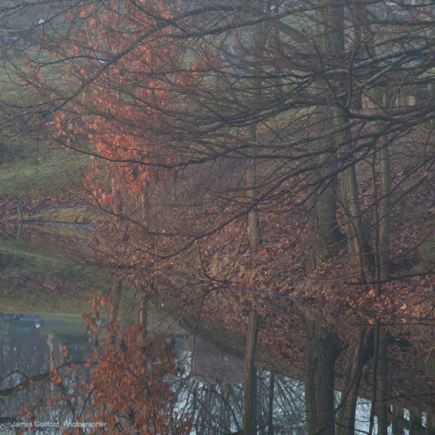 Photo: Left-over autumn leaves, green grass, trees reflect in still waters. Photo by James Guilford.