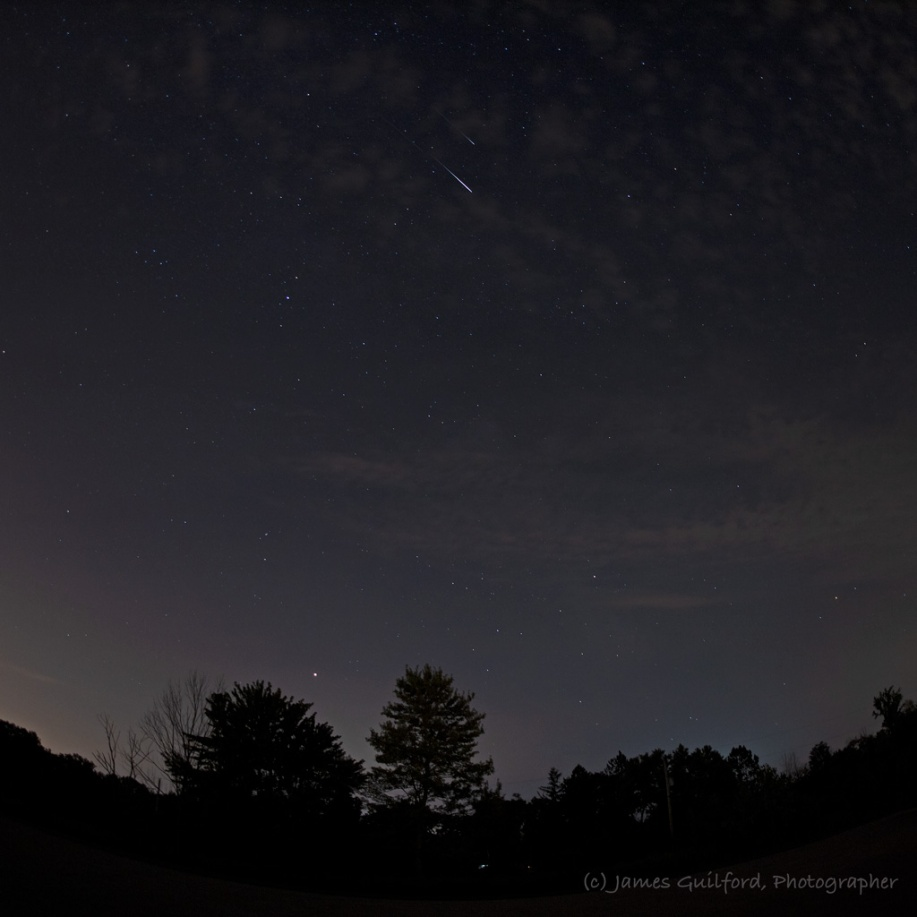 Photo: Pretty Pair of Perseids: Two Perseid meteors glow high in the southern sky over constellation Sagitarius. Photo by James Guilford.