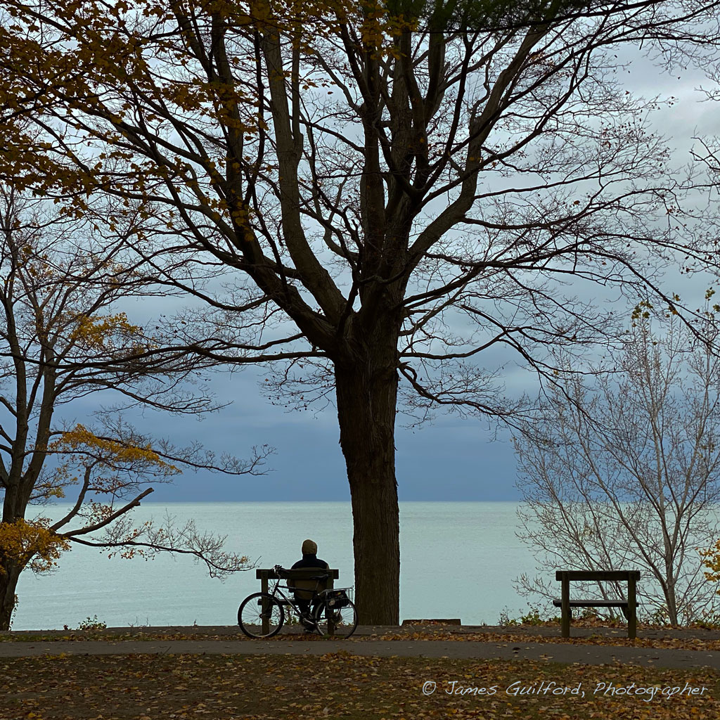 Photo: A man, bench, and bicycle silhoutted against glowing waters. Photo by James Guilford.