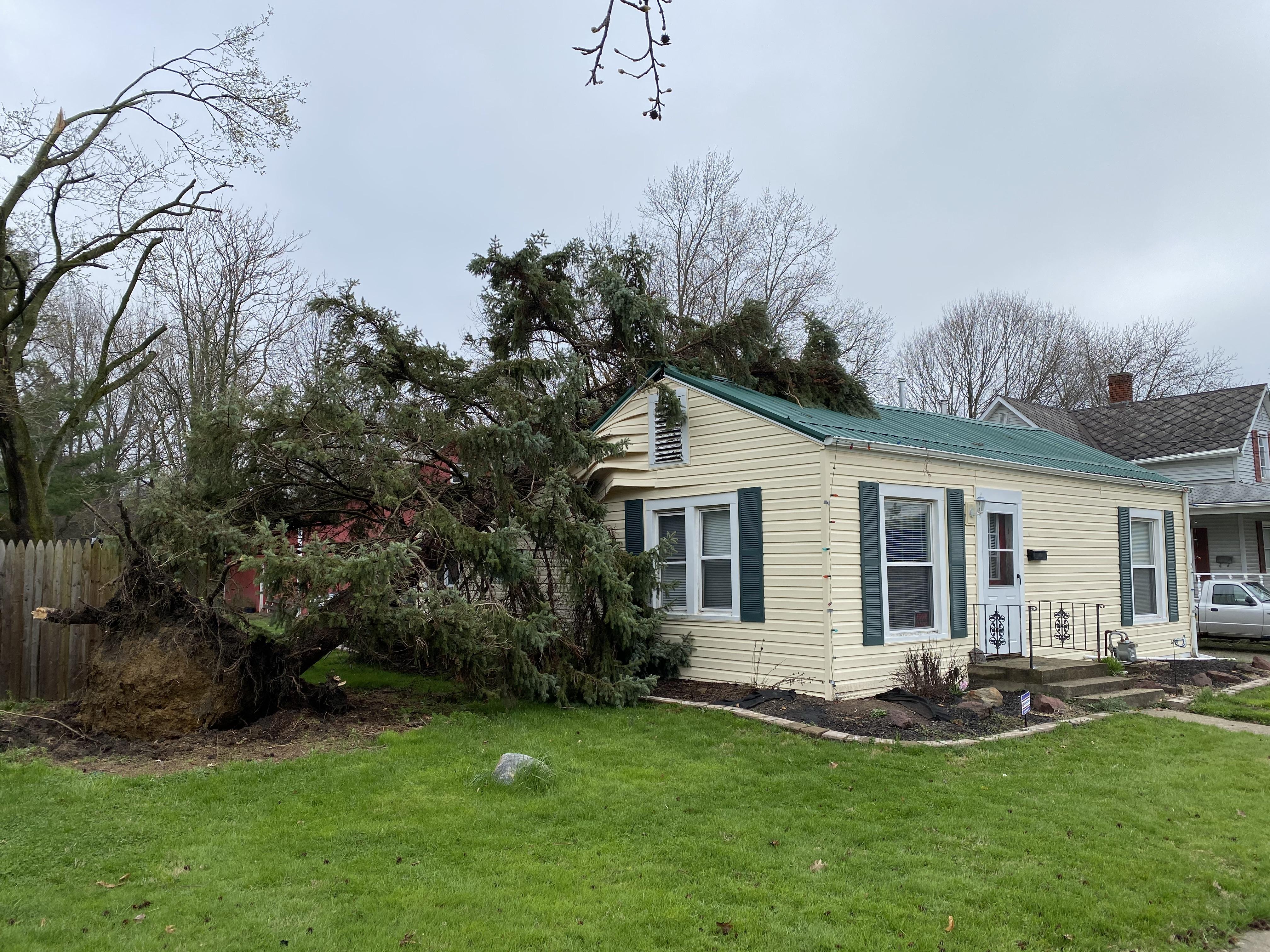 Fallen tree atop house.